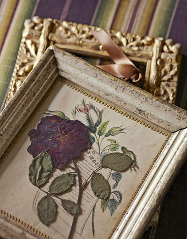 28_2011_22_rose-pressed-de-antique-picture-frames-from-country-living