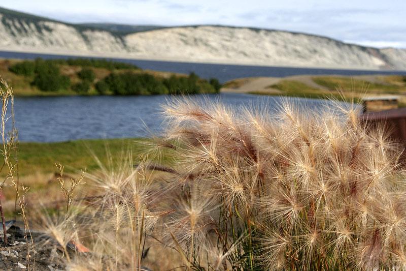 Вид на острова реки Лены